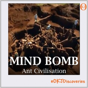 Ant Civilisation (Mind Bomb #003) Featured Image