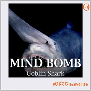 Goblin Shark (Mind Bomb #002) Featured Image