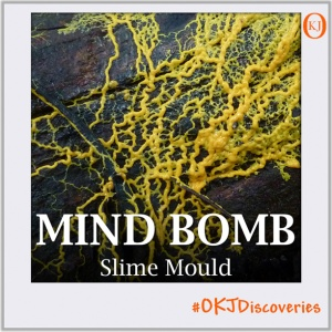 Slime Mould (Mind Bomb #012) Featured Image