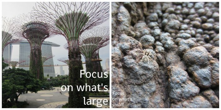 As you can see, a simple difference in perspective (focus) will allow you to see the same place in a whole new light