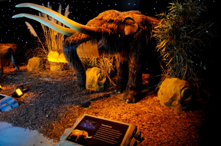 Titans-of-the-Past-Mammoth