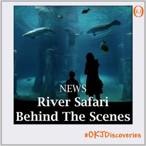 Behind-the-Scenes-of-the-World's-Largest-Freshwater-Aquarium-at-River-Safari-Singapore