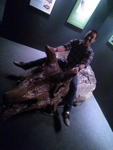 I am a Triceratops rider~