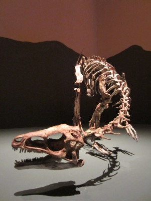 Dawn-to-Extinction-Exhibits-5
