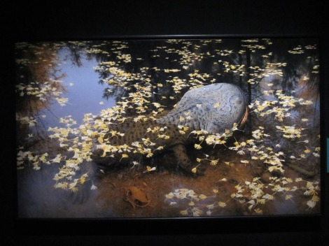 Dawn-to-Extinction-Exhibits-8