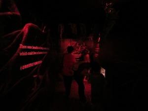 Dawn to extinction tunnel